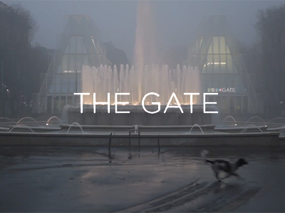 SSA_ExpoGate_Video_Mies_preview